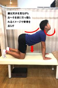 埼玉県 さいたま市 浦和区 県庁通り整体院 慢性腰痛 四つ這い背中反らし