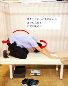 埼玉県 さいたま市 浦和区 県庁通り整体院 慢性腰痛 アーサナ 丸め