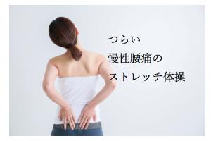 埼玉県 さいたま市 浦和区 県庁通り整体院 慢性腰痛 つらい