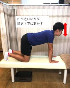 埼玉県 さいたま市 浦和区 県庁通り整体院 慢性腰痛  四つ這い 頭振り
