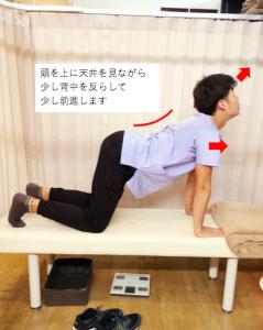 埼玉県 さいたま市 浦和区 県庁通り整体院 慢性腰痛  四つ這い 少し反らし