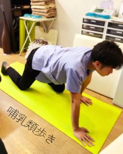 埼玉県 さいたま市 浦和区 県庁通り整体院 慢性腰痛 哺乳類歩き